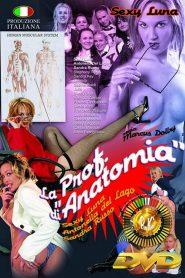 La Prof. di Anatomia watch erotic movies